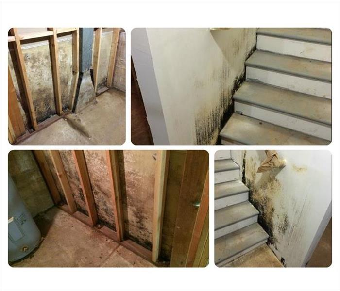 A Moldy Basement in Mokelumne Hill, CA Before