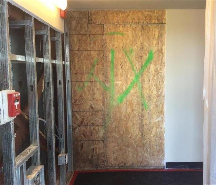 Kirkwood Commercial Mold Remediation
