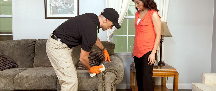 Sonora, CA carpet upholstery cleaning